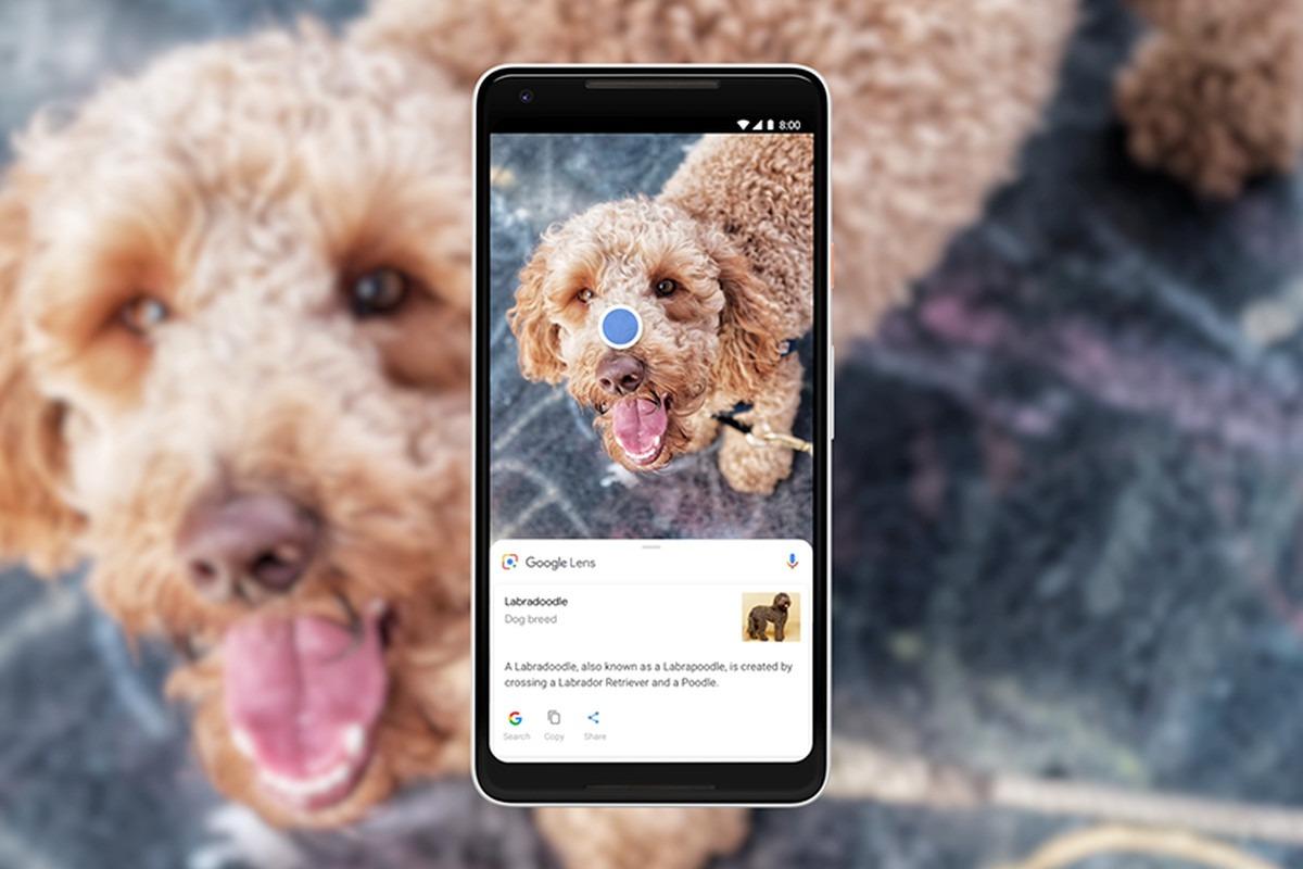 Google Lens – пример работы